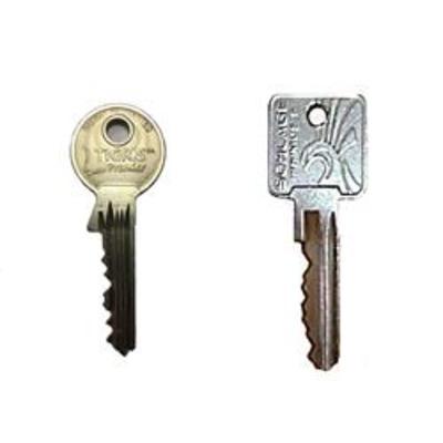 Laidlaw master key cutting - Protected keys